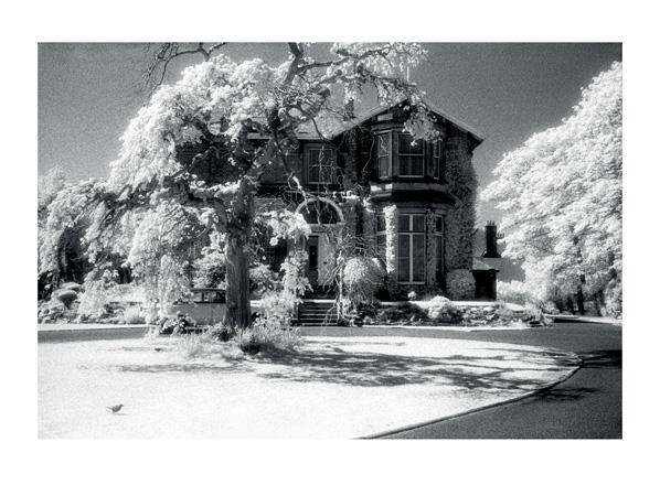 The dentist 40 x 30cm black white print by max hernn